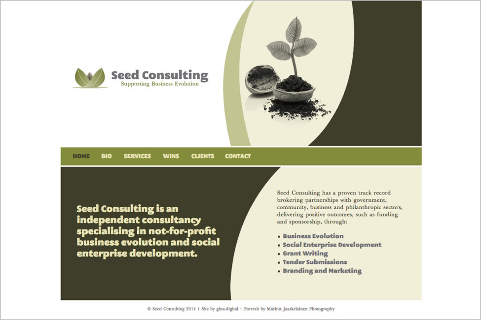 seed-consulting-not-for-profit-web-design-01