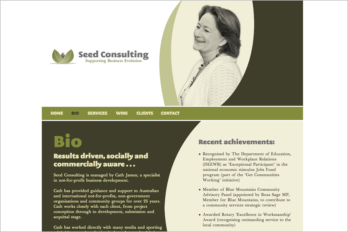 seed-consulting-not-for-profit-web-design-02