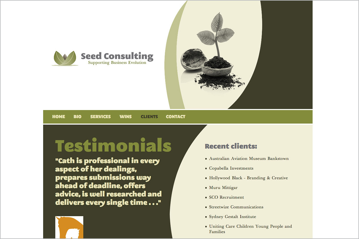 seed-consulting-not-for-profit-web-design-04