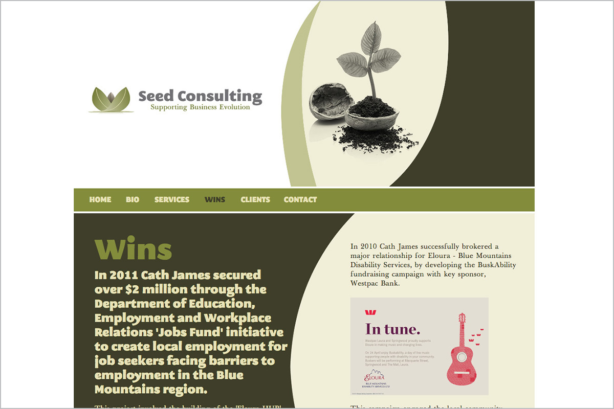 seed-consulting-not-for-profit-web-design-03